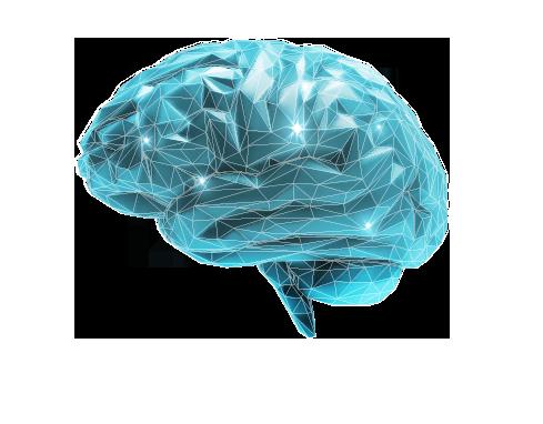 TGW: Realising Visions-Gehirn