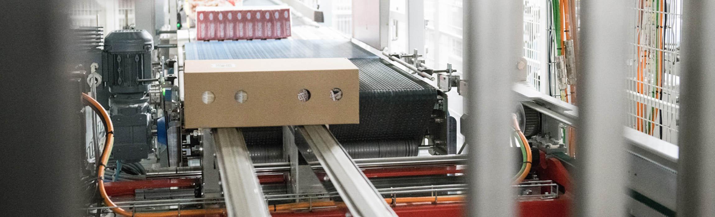 Stax est notre palettisation semi-automatique et entièrement automatique de conteneurs pour votre intralogistique.