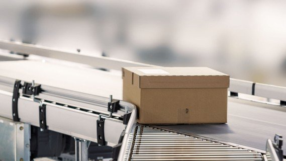 KingDrive is TGW's conveyor system for totes, trays, cartons and polybags.