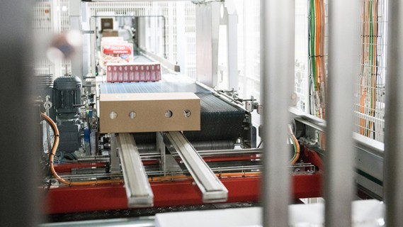 The intralogistics system combines various goods receipt zones, pallet warehouses, picking areas and goods issue areas with conveyor systems.